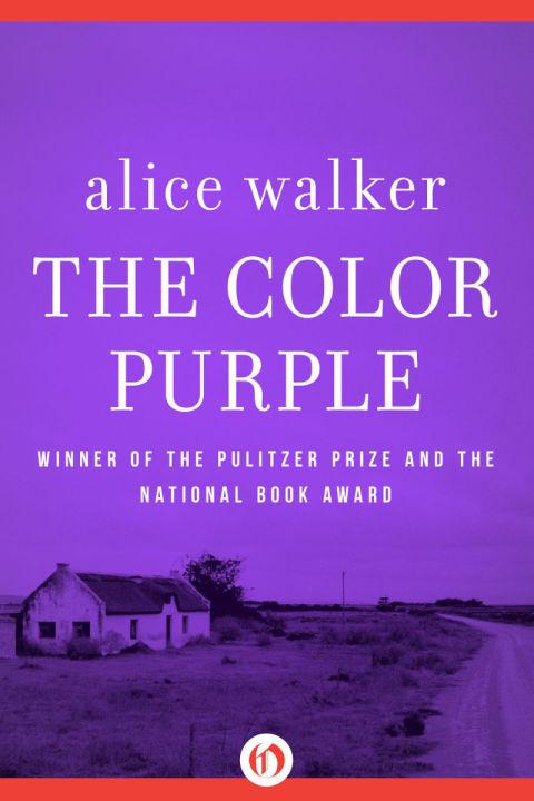 內容描述一名住在美國南方的14歲黑人少女,如何在家庭父權的欺侮下掙扎求生,同時論述了性別歧視與種族主義,並讓書中人物試圖打破傳統的性別角色,此書同時被導演史蒂芬.史匹柏改編為同名電影《紫色姐妹花,The ColorPurple》